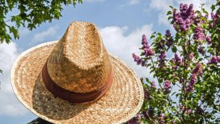 子どもの日焼け対策や処置方法について。日焼け止めは必要なのか調べてみた!