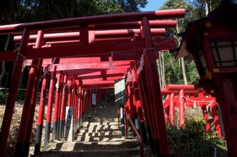 Peace Pagoda Hike - 09