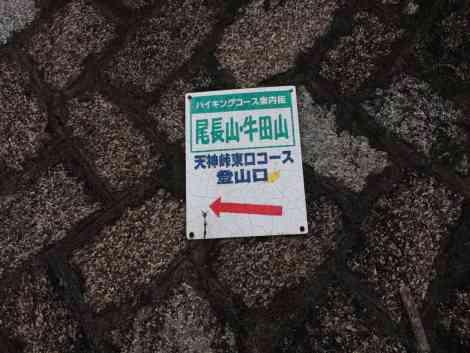 Yamane-cho to Onaga-yama - 04