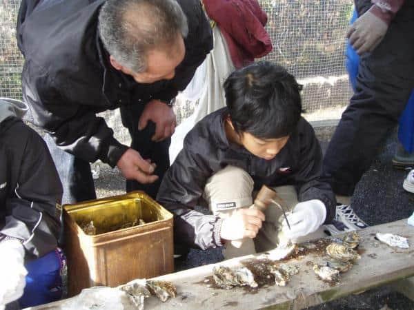Hiroshima Seafood Festival