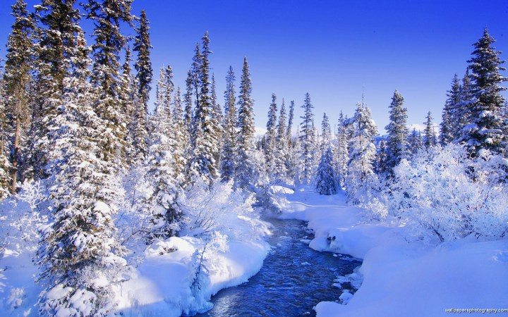 Beautiful Snowy Scene Wallpapers 49 Images