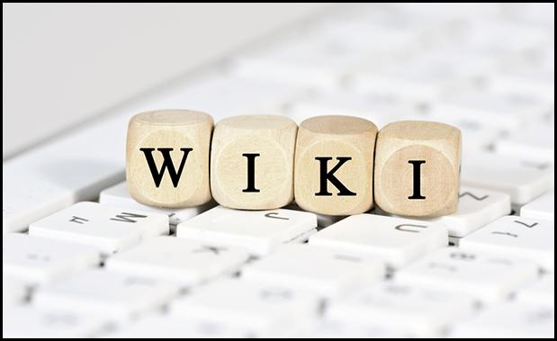 fc2・seesaa(旧livedoor)wikiにアドセンスは設置できるの?