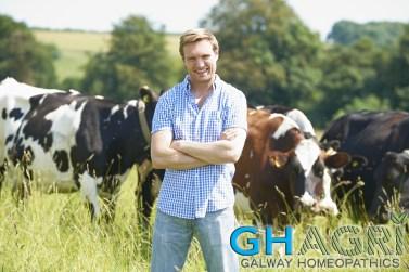 Portrait Of Dairy Farmer In Field With Cattle