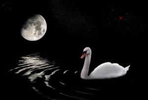 луна лебедь