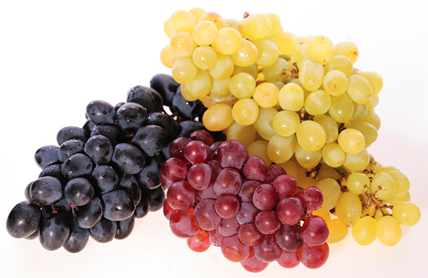 vinograd poleznie svoistva