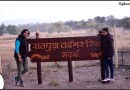 Tryst with Satpura Tiger Reserve