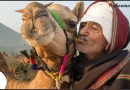 Creator of beautiful ground for color, and carnival- Pushkar Fair