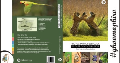 Photographic Field Guide to the Wildlife of Central India – Must Have Book