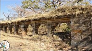 Bhandhavgarh
