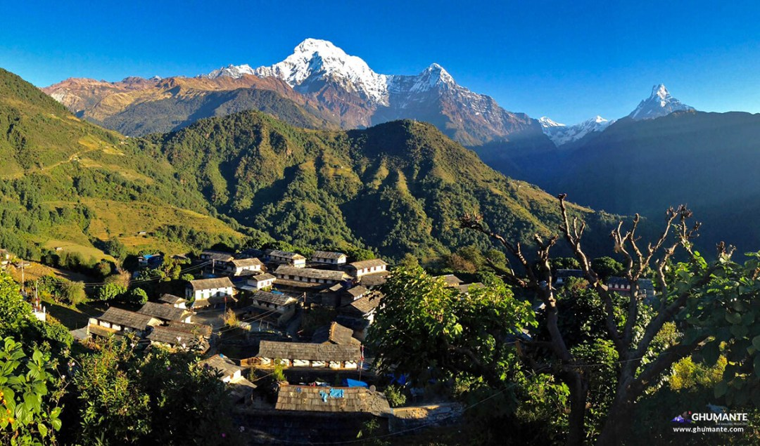 Glowing Ghandruk village, as we left in the morning