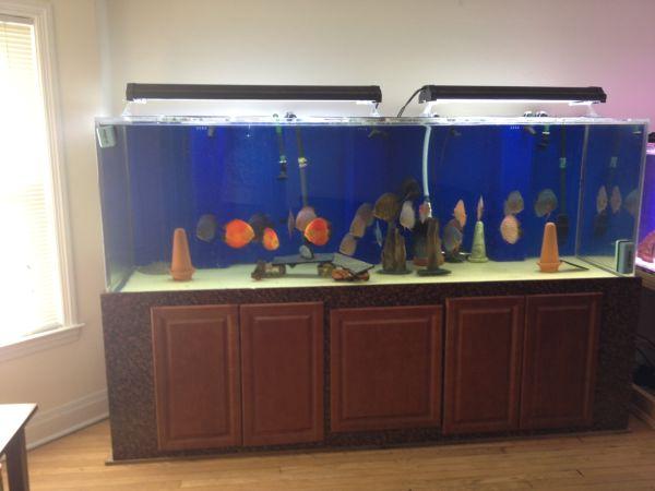 360 Gallon Aquarium Acrylic sell or TRADE for 600 gallon tank ? $