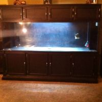 400 gallon aquarium for sale - have a nice 400 gallon aquarium set up it comes with 150 gallon sump