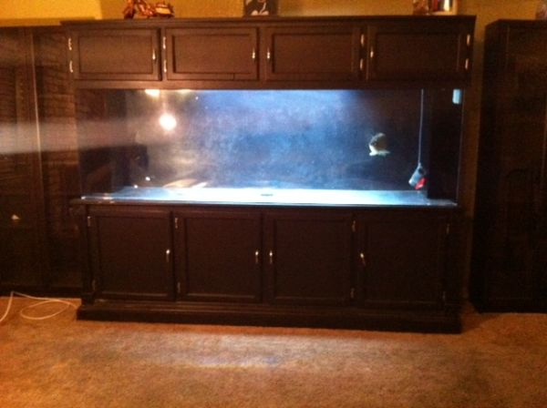 300 gallon aquarium ? $1300 (Stockton) | giant aquariums