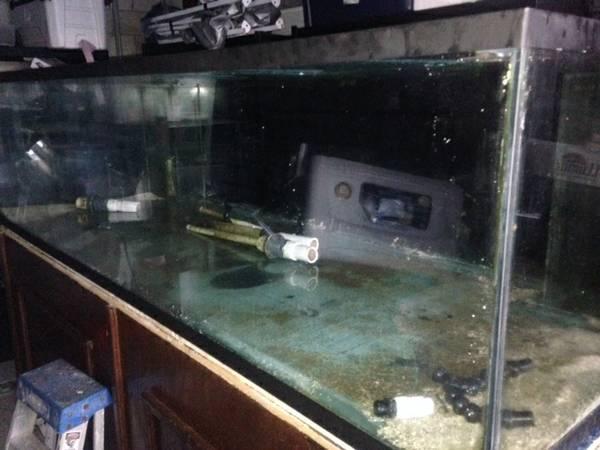 PDF Diy Aquarium Stand 125 Gallon Plans DIY Free how to build a podium