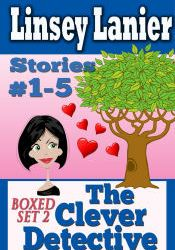 clever-detective-box-2-linsey-lanier