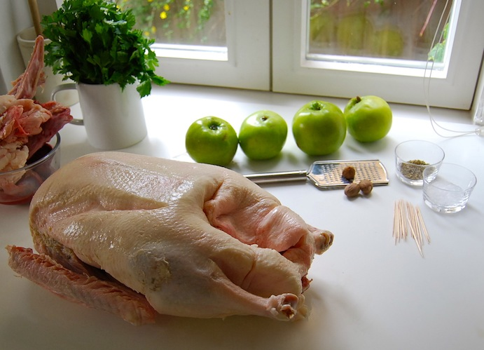 preparing a goose 1