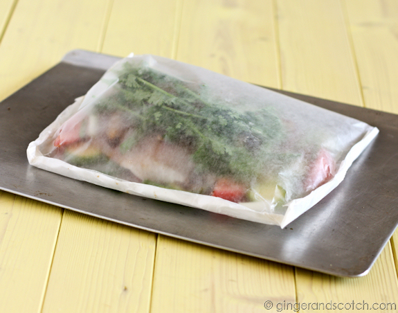 Fish in a Bag