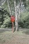 Arrêt Stop