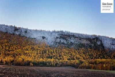 Les 3 couleurs de l'automne