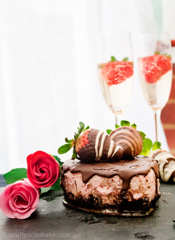 Chocolate Covered Strawberry Cheesecake for Two - Creamy strawberry cheesecaked with an oreo crust, topped with a rich chocolate ganache. Made especially for two, perfect for a Valentine's Day Dessert!