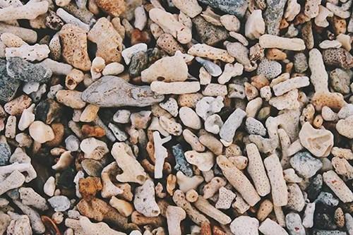 ビーチに散りばめられた珊瑚のテクスチャのフリー写真素材(商用可)