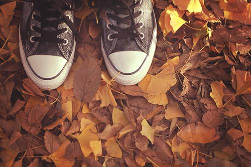 落ち葉を踏みしめるスニーカーのフリー写真素材(商用可)