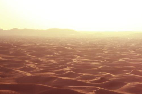 砂漠に容赦なく照りつける太陽のフリー写真素材(商用可)