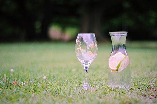 ピクニックに持って来たオシャレなグラスとデキャンタのフリー写真素材(商用可)
