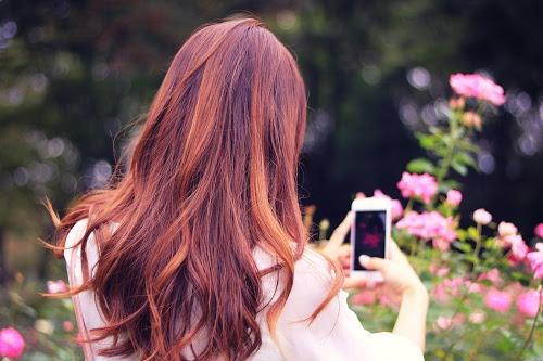 スマートフォンのカメラで花を撮影している女の子のフリー写真素材(商用可)