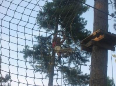 grimpe dans les arbres a barcelonnette en ubaye