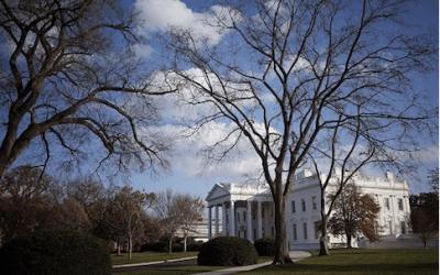 Obama Admin Loyalists, Government Insiders Sabotage Trump White House