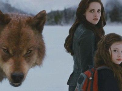 Twilight Saga: Breaking Dawn Part 2/Summit