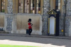 One of the queen's guards