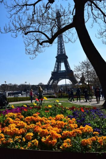 Paris in Full Bloom