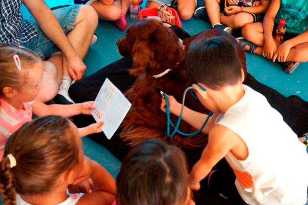 En la foto observamos la simulación de un chequeo veterinario, siendo Jamie auscultada con el fonendoscopio y revisando que tiene todas las vacunas y desparasitaciones al día en la cartilla veterinaria (fomentando la importancia de la asistencia veterinaria para la buena salud de nuestras mascotas y evitar zoonosis en la población) ¡Éstos niños son unos profesionales!
