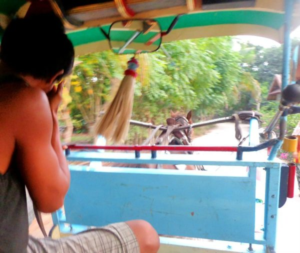 Riding in the cidomo (horse cart) can be an experience