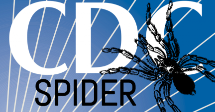 Image result for cdc spiders