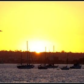 San Diego Bay Sunset