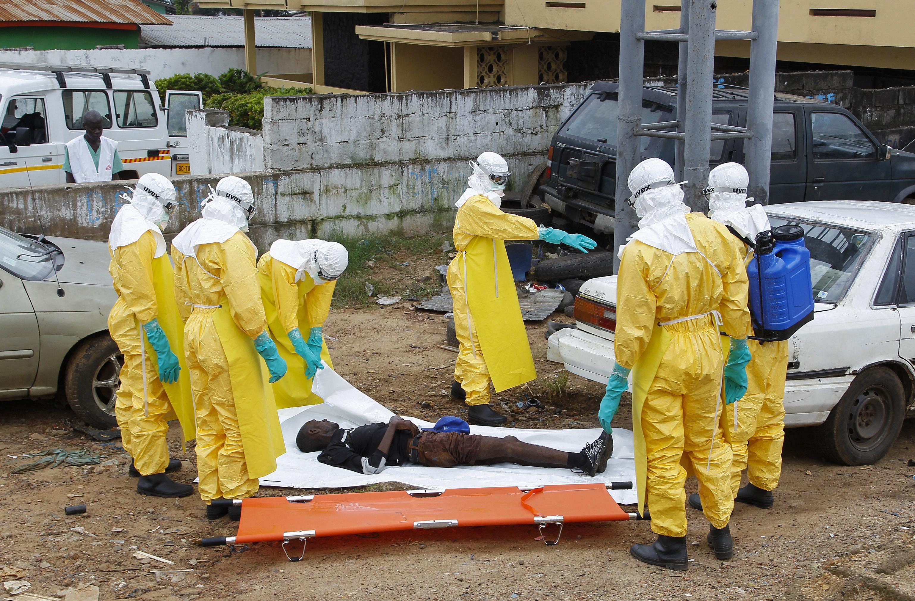 Ebola virus essay