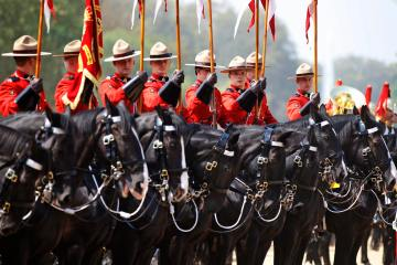 Royal Canadian Mounted Police participate at the Changing of the Queen's Life Guard Ceremony at Horse Guards Parade in central London, May 23, 2012. (AP Photo/Lefteris Pitarakis)