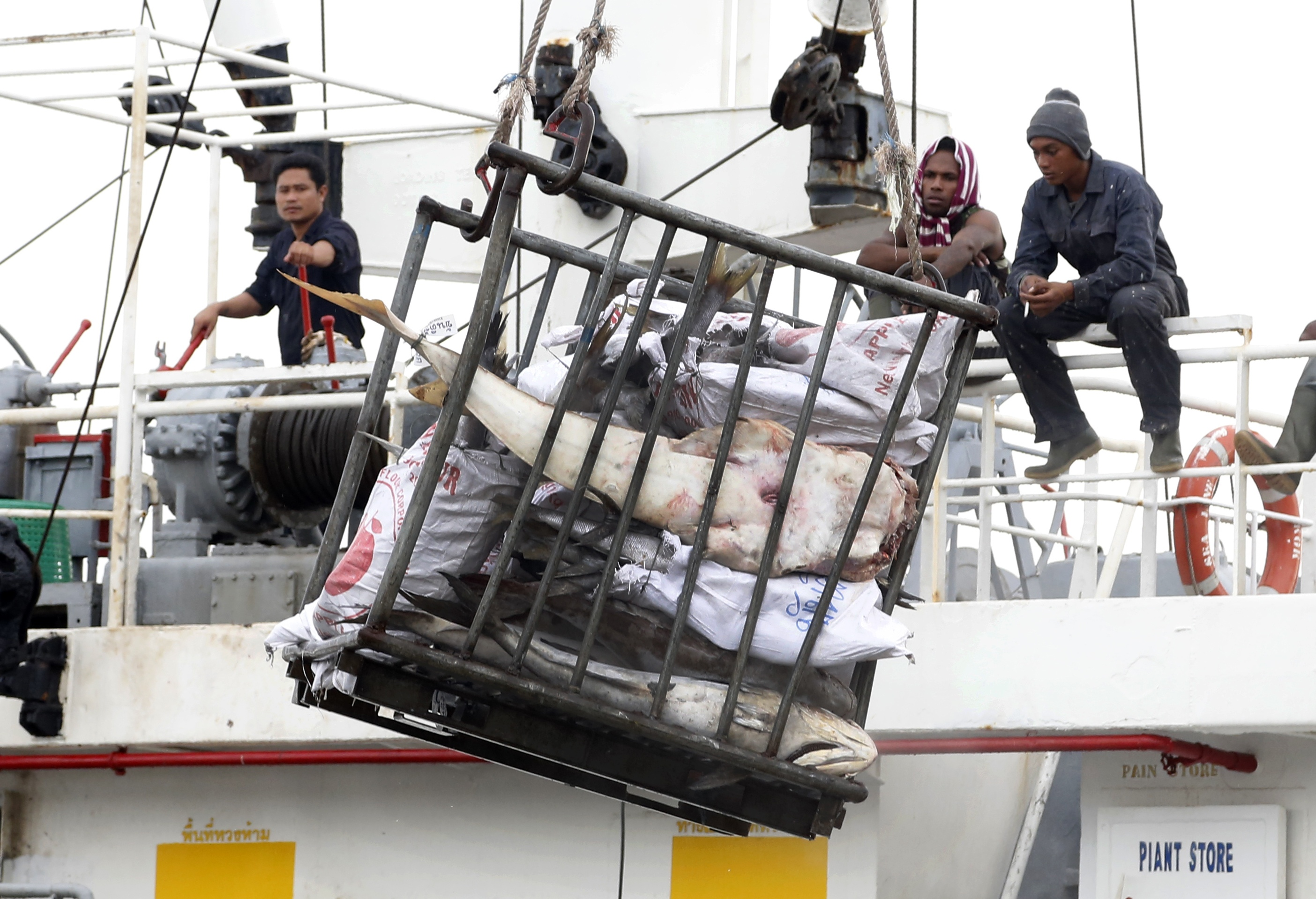 photo essay slavery in the thai fishing industry global journalist in this nov 22 2014 photo workers in benjina load