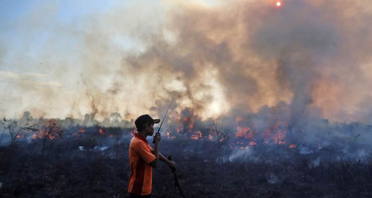 A fireman talks on his walkie-talkie as he and his team battle peatland fire on a field in Pemulutan, South Sumatra, Indonesia on July 30, 2015. (AP Photo)