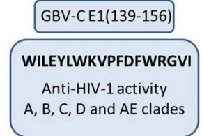 Definition of an 18-mer Synthetic Peptide Derived from the GB virus C E1 Protein as a New HIV-1 Entry Inhibitor