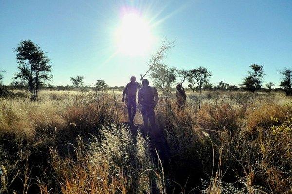 Bushmeat Skewers | An Alligator's Bite | Global Table ...