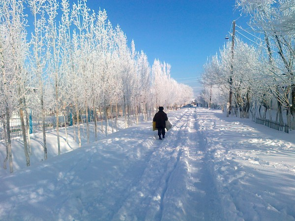 Photo by Uzbekistan in the snow, by Kmaksud2012.