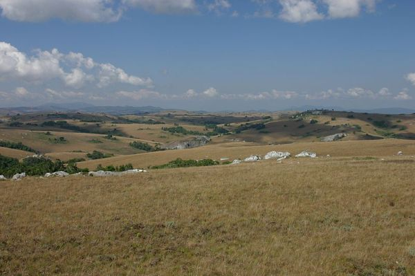 Typical Landscape of the Nyika Plateau by Dr. Thomas Wagner