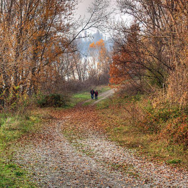 Photo of the Secchia River by Roberto Ferrari from Campogalliano (Modena), Italy.