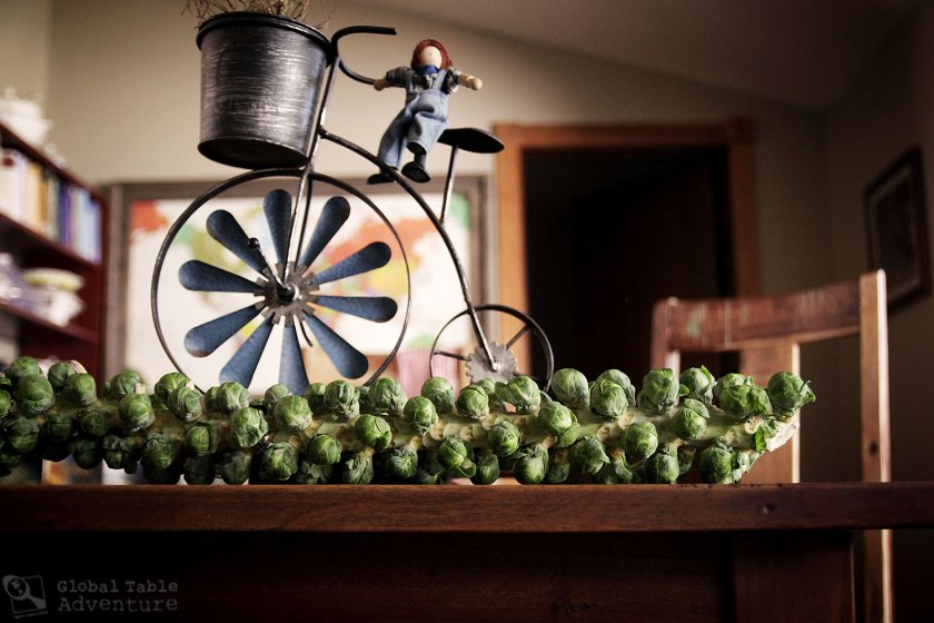 Flemish Brussels Sprouts Recipe