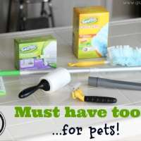 5 Must Have Tools for Pets