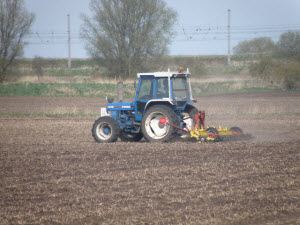 Sugar_beet_drilling,_Sawtry_Fen_-_geograph.org.uk_-_1240063_300px